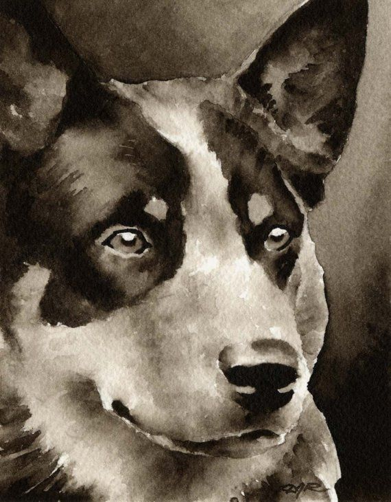Blue Heeler Dog in Watercolor...looks like my Zipper Fly (just missing freckles)