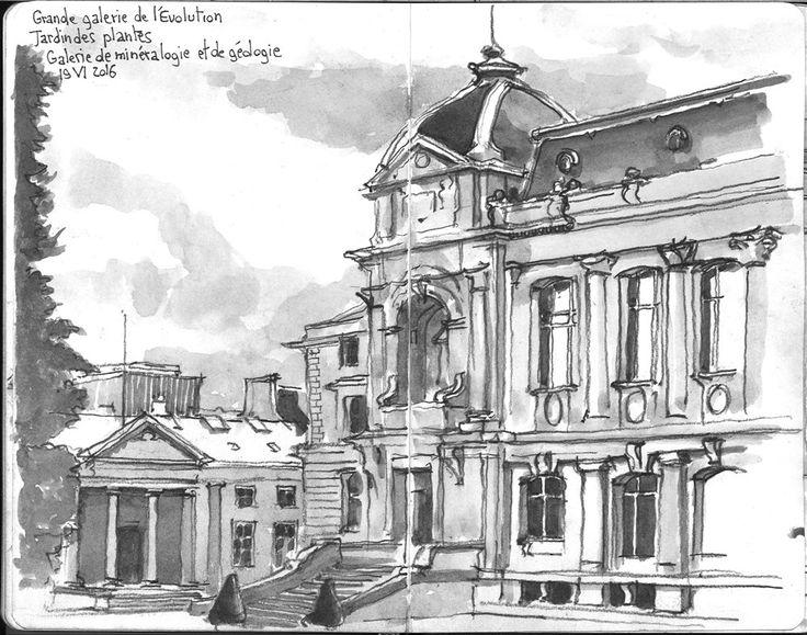 Dessin à l'aquarelle de Paris:  Le jardin des plantes. Grande galerie de l'évolution. Galerie de minéralogie et de géologie.