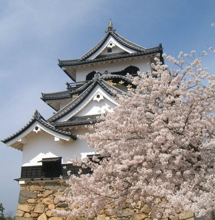 国宝・彦根城  Hikone-jo Castle