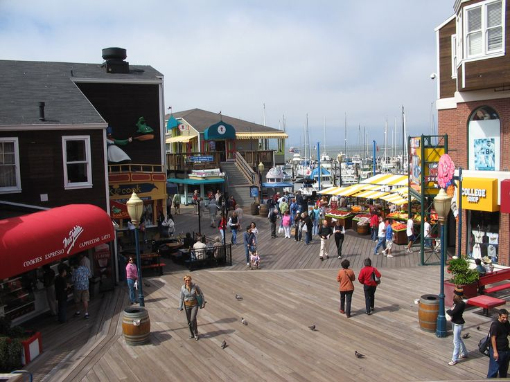 Pier 39: An entire day can easily be spent at the vibrant Pier 39, where dining, shopping, attractions, and beautiful bay views are abundant. The kids will be mesmerized by the world-famous and playful sea lions hanging out on K-Dock, giddy on the carousel, awe-struck at the Aquarium of the Bay, thrilled with the 7D Experience roller coaster, and tickled with the street performers.