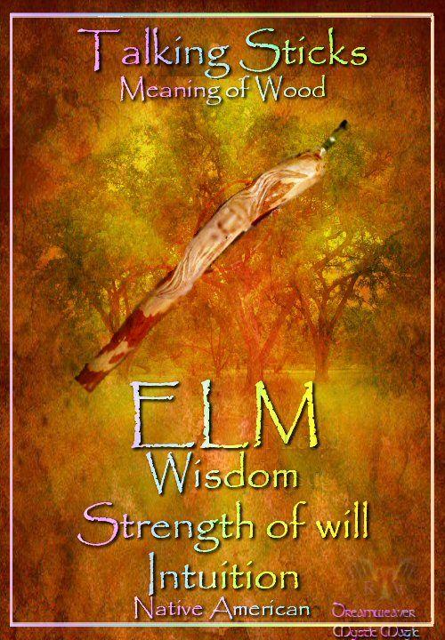 OLM / IEP - wijsheid / wilskracht / intuïtie / ELM - wisdom / strength of will / intuition