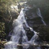 High Shoals Scenic Area and Falls Trail - Georgia | AllTrails.com