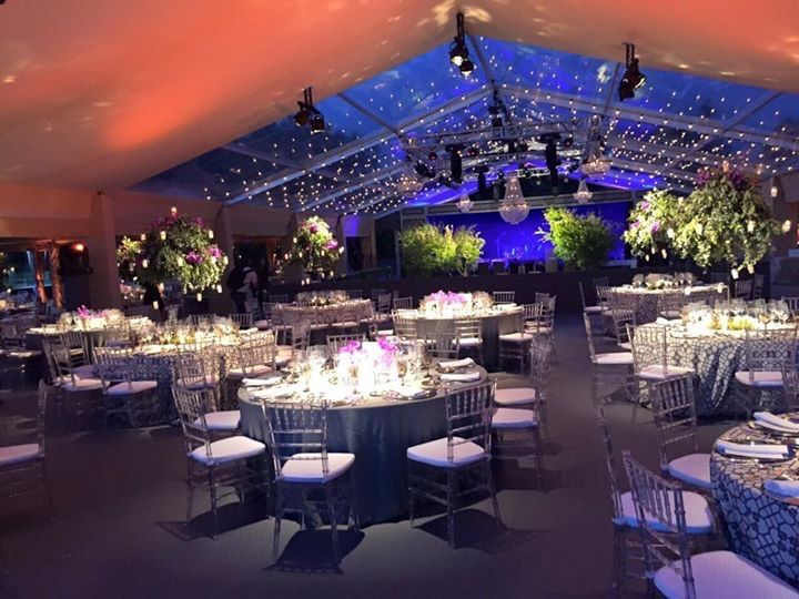 20 best wedding chandelier rentals images on pinterest crystal wedding in a marquee on a vineyard take these crystal chandeliers for an amazing result you can hire them aloadofball Gallery