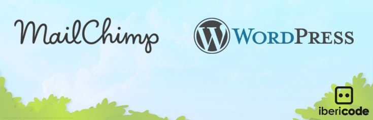 MailChimp for WordPress, the absolute best. Subscribe your WordPress site visitors to your MailChimp lists, with ease.