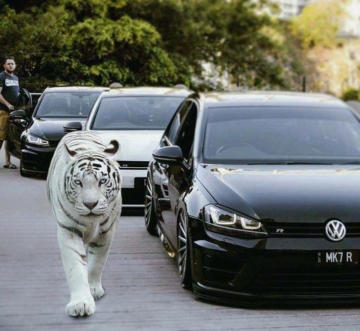 "VW Lifestyle | since 09/2016 på Instagram: ""? ? #vw #volkswagen #mk7 #mk6 #mk5 #mk4 #mk3 #mk2 #mk1 #vwlife #gti #r32 #gtd #gte #gli #car #cars #carsofinstagram #vwgolf #vwlove #golf…"""