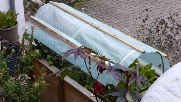 Vom Hochbeet Zum Mini Gewachshaus Dach Selber Bauen Garten