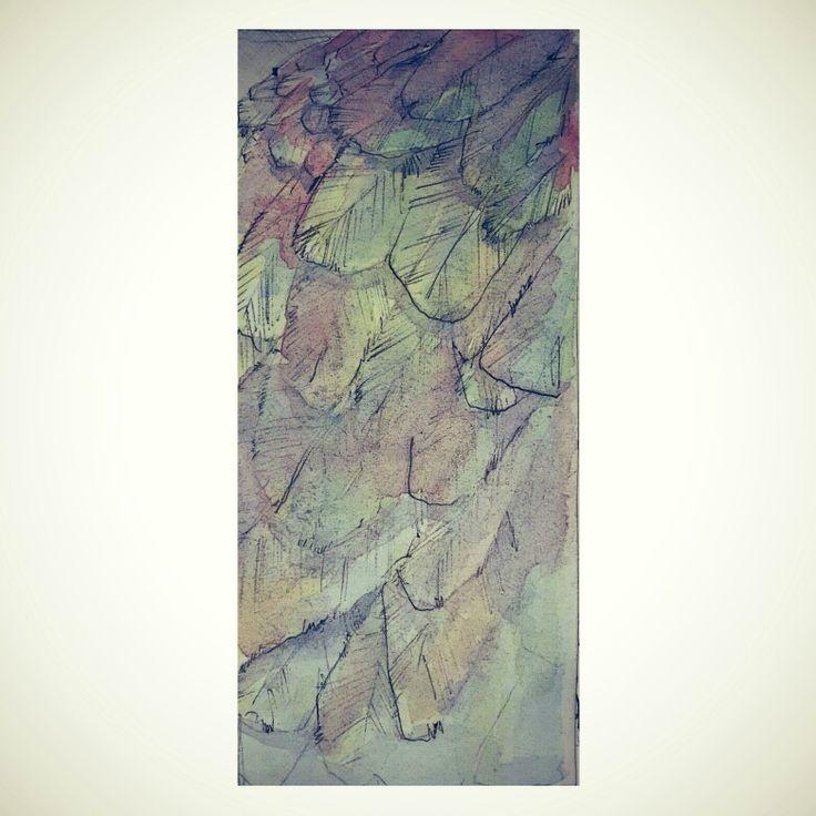 Bulu ... | watercolor on paper