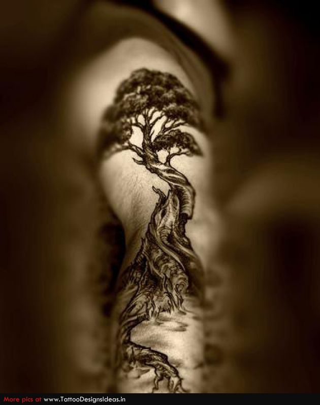 Tatto design of Tree Tattoos - TattooDesignsIdeas.in ...