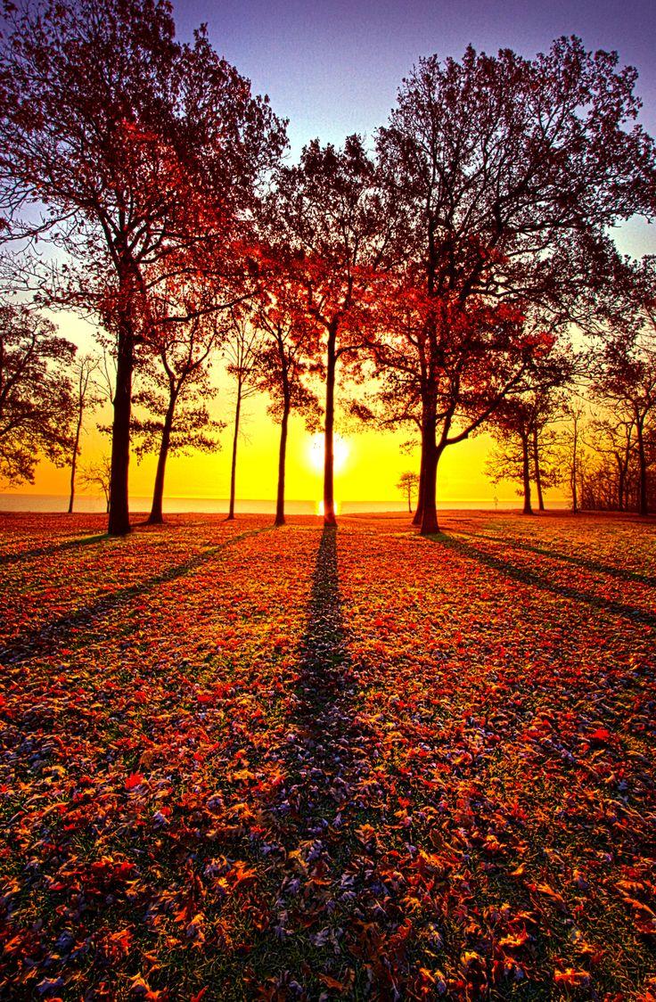 Autumn sunrise in Wisconsin. Wisconsin Horizons By Phil Koch. http://phil-koch.artistwebsites.com