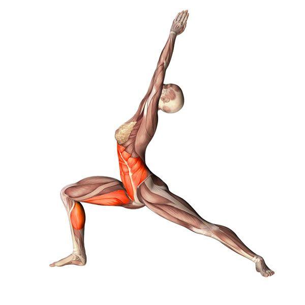 ૐ YOGA ૐ Urdhva Ashva Sanchalasana ૐLa Estocada baja con la Extensión Ascendente, con Pierna Izquierda adelante. Low lunge with upward stretch, left leg forward.