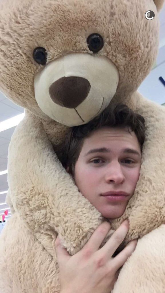 """"""" hiyo i'm ansel but you can call me alex. i mostly play soccer and baseball. i surf a lot as well. social medias are @/ansel so yeah hmu :) """""""