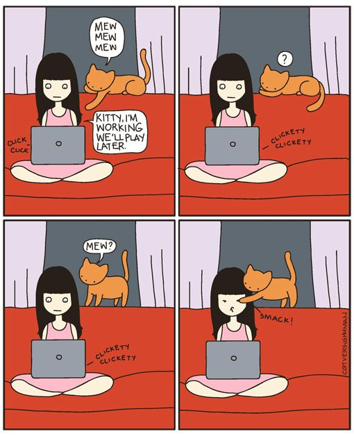 "cat versus human: ""Pay attention to me, and only me!"" ~Dott"