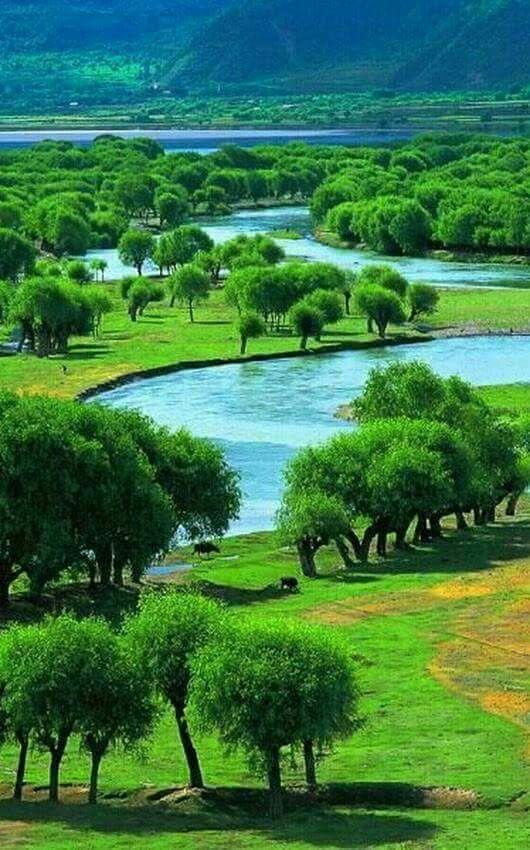 Natural Beauty Of Tibet