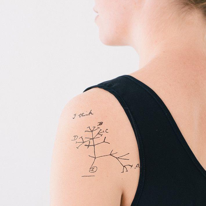 Darwin Origin of Species temporary tattoo