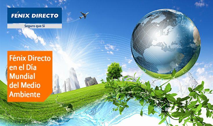 Fénix Directo, empresa comprometida con el Medio Ambiente