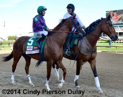 California Chrome in the post parade before the 2014 Kentucky Derby at Churchill Downs