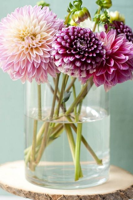 .Dahlias are my favorite flowers! I would love to have these and other flowers all over my place.