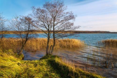 Фотограф Михаил Кушнер (Michael Kushner) - Ноябрь на озере Черея #2027606. 35PHOTO