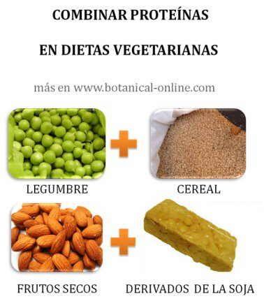 proteinas vegetales http://www.botanical-online.com/combinaciondeproteinas.htm