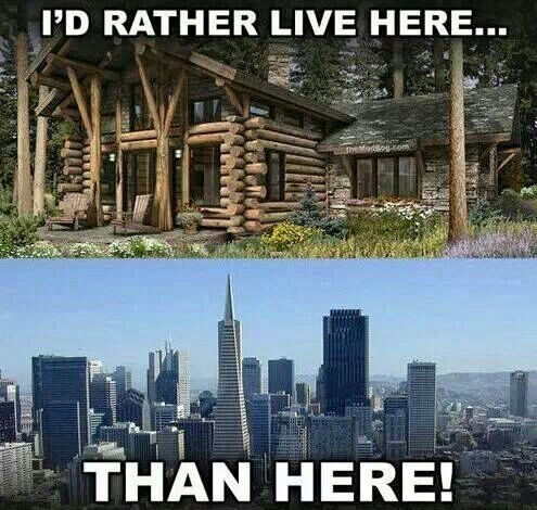 essay about living in the city vs living in the country