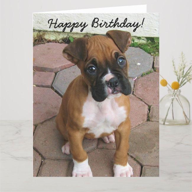 Happy Birthday Boxer Puppy Greeting Card Zazzle Com Happy