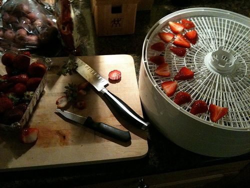30 Tips and Facts About Dehydrating and Drying Food