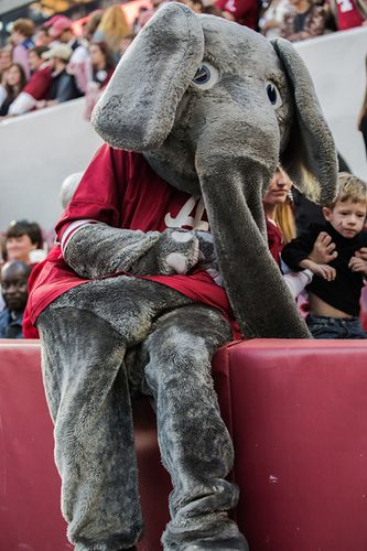 Alabama vs. Tennessee | Flickr - Photo Sharing!