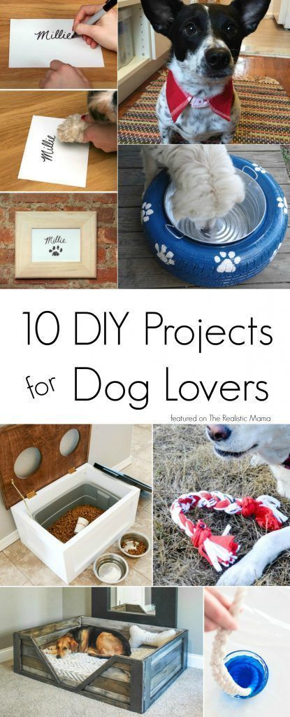 10 of the Best DIY Projects for Dog Lovers Really Cool Homemade Dog stuff ideas Your Dog Will Love from DIY Dog Bowl, dog bed, to DIY Dog Food Container from a Recycled Popcorn Tin Use this awesome dog hacks tips to create Interactive Dog Toys -- Repin to your own inspiration board --