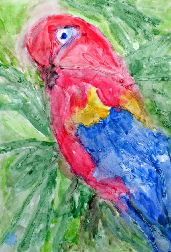 glue (PVA) and watercolour painting, MALOWANIE KLEJEM I AKWARELĄ - PAPUGA