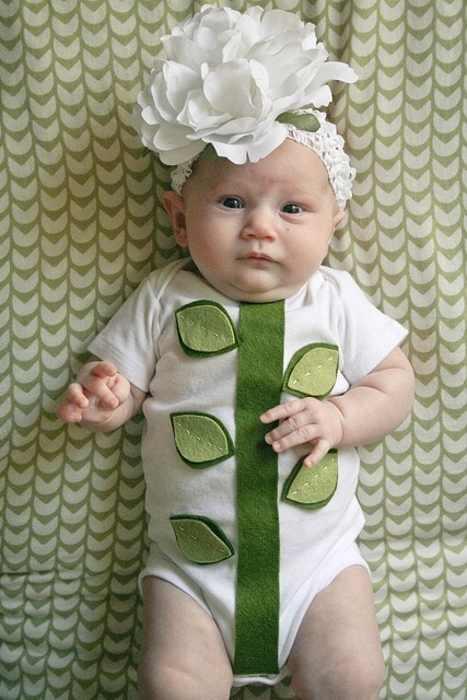 baby costume flower - Google Search