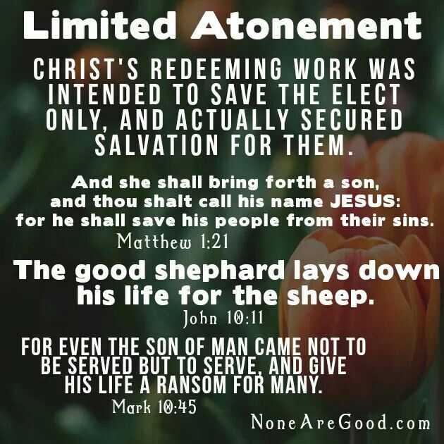 """The question answered by the doctrine of limited atonement is this: Is Christ a real Savior or merely a """"potential"""" Savior? The """"L"""" of Tulip, is probably the most disputed term of the five. The idea that the atonement is """"limited"""" provides the crux of the controversy. In other words, did Christ die to atone for sins of every human being, or did He die to atone for the sins of the elect only?"""