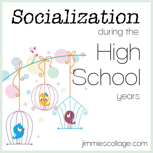 Socialization During the High School Years - big thumbs up on this post!