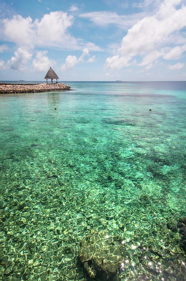 Turquoise Gem  by Jenny Rainbow.  #JennyRainbowFineArtPhotography #Maldives #Ocean #WallArt #ArtForHome #HomeDecor #Water #Zen #ZenArt