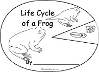 27 best images about Life Cycle of a Frog on Pinterest ...