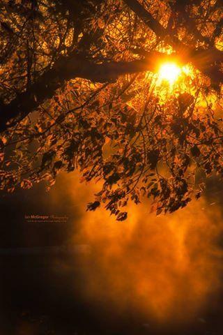 Sunrise at York Lake