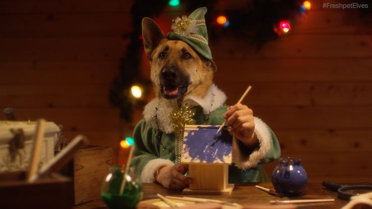 Santa's Elves - Dogs and Cats with Human Hands Making Toys - Freshpet  -  good, funny christmas video, love it!   lj