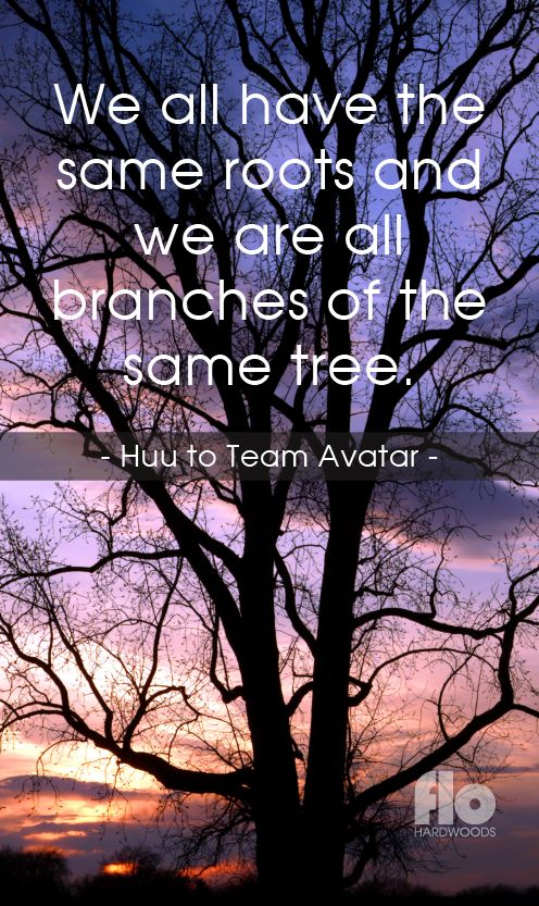 We all have  the same roots and we are all branches of the same tree. ~Huu to Team Avatar  #FLOhardwoods