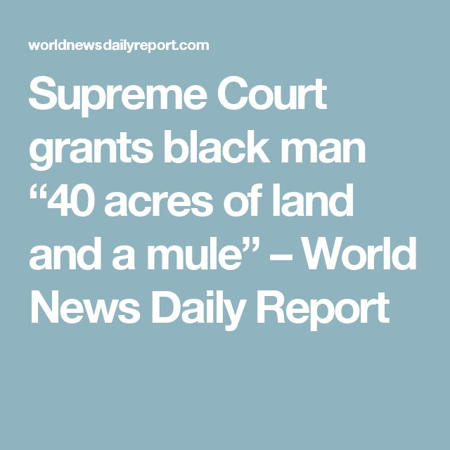 """Supreme Court grants black man """"40 acres of land and a mule"""" – World News Daily Report"""