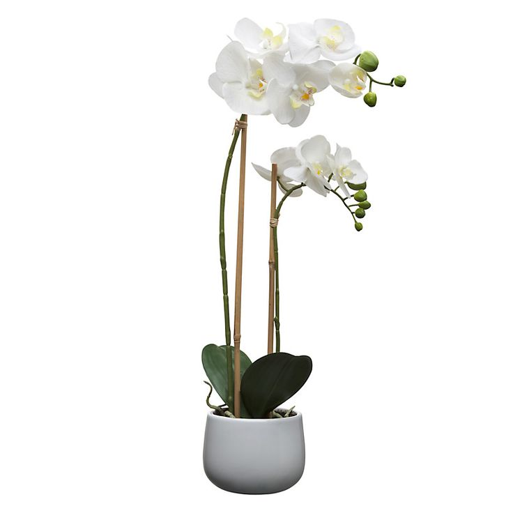 1000 ideas about artificial orchids on pinterest. Black Bedroom Furniture Sets. Home Design Ideas