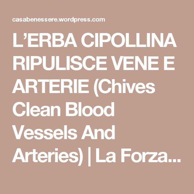 L'ERBA CIPOLLINA RIPULISCE VENE E ARTERIE (Chives Clean Blood Vessels And Arteries)   La ForzaDellaNatura's Blog
