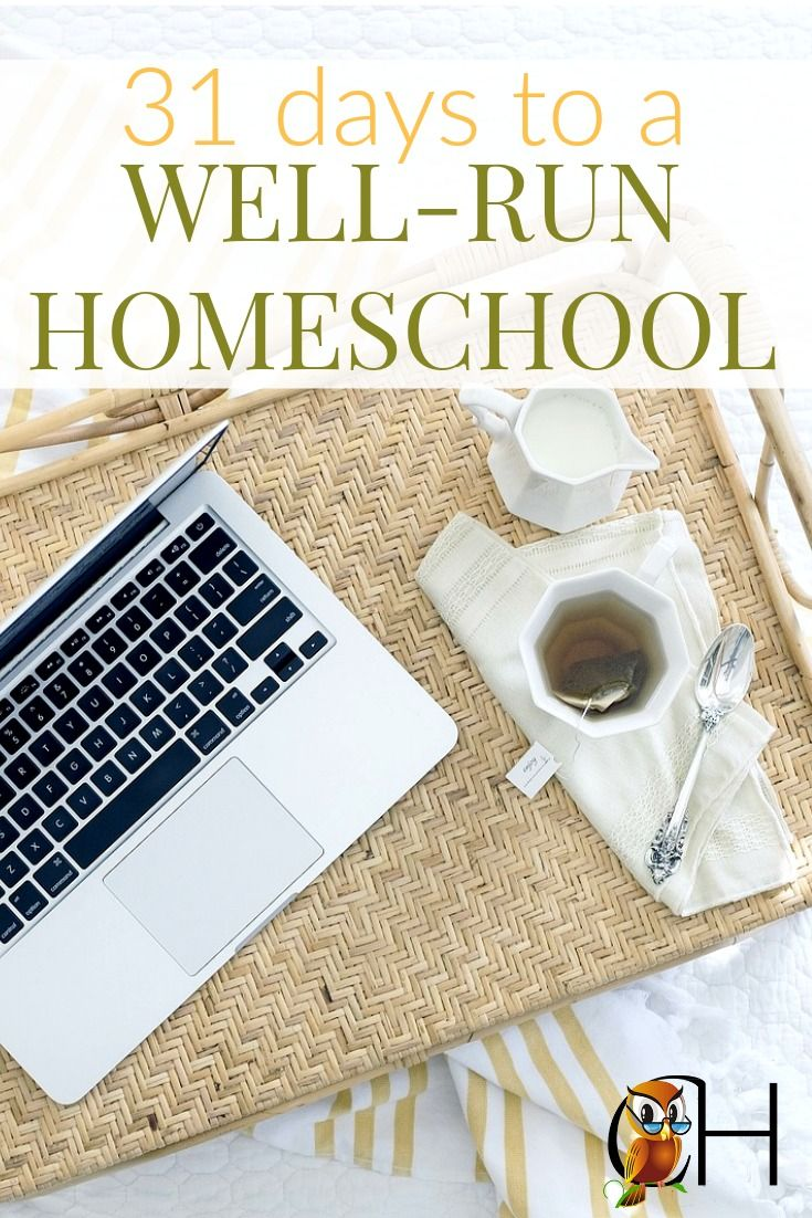 Have you ever wondered why some families tend to have a well-run homeschool routine that flows smoothly? The homeschool and household have a good balance. You too can have a well-run homeschool. Click to learn more!