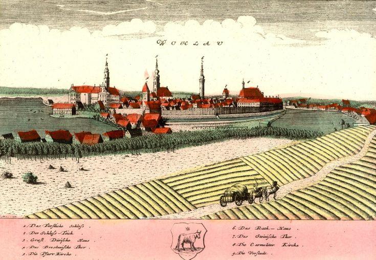 Wołów (Wohlau) - Rok 1737