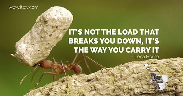 Love this thought! (lou holtz fb cover photo quotes - Google Search)