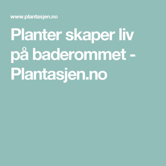 Planter skaper liv på baderommet - Plantasjen.no