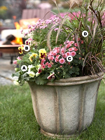 Mix grass with different types of flowers. Great look!