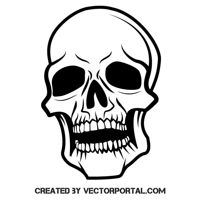 Silhouette Of Human Skull Skull Skull Silhouette Human Skull