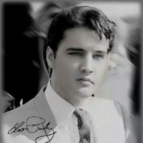 """elvis."".......what a beautiful picture of ""elvis."".........I AGREE.......LOVE THIS...R.I.P."