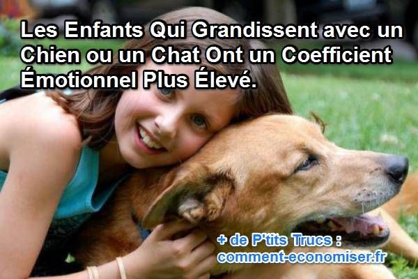 Saviez-vous que les enfants qui grandissent avec des chats et des chiens possèdent une intelligence émotionnelle plus importante ?  Découvrez l'astuce ici : http://www.comment-economiser.fr/enfants-qui-grandissent-avec-animal-ont-coefficient-emotionn.html?utm_content=buffer16312&utm_medium=social&utm_source=pinterest.com&utm_campaign=buffer
