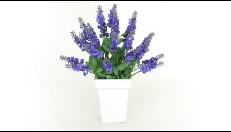 A beleza das flores e a cor alegre empresta ao ambiente um ar de leveza e seu vaso branco de madeira atribui delicadeza ao conjunto. O arranjo Lavanda* Toque Real é certamente uma ótima opção de presente.    Dimensões:    34cm de altura