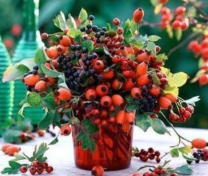 csipkebogyó vázában
